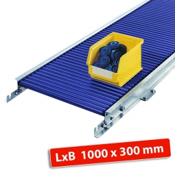 Klein-Rollenbahn, LxB 1000 x 340 mm, Bahnbreite: 300 mm, Achsabstand: 37,5 mm, Tragrollen Ø 30x1,5 mm